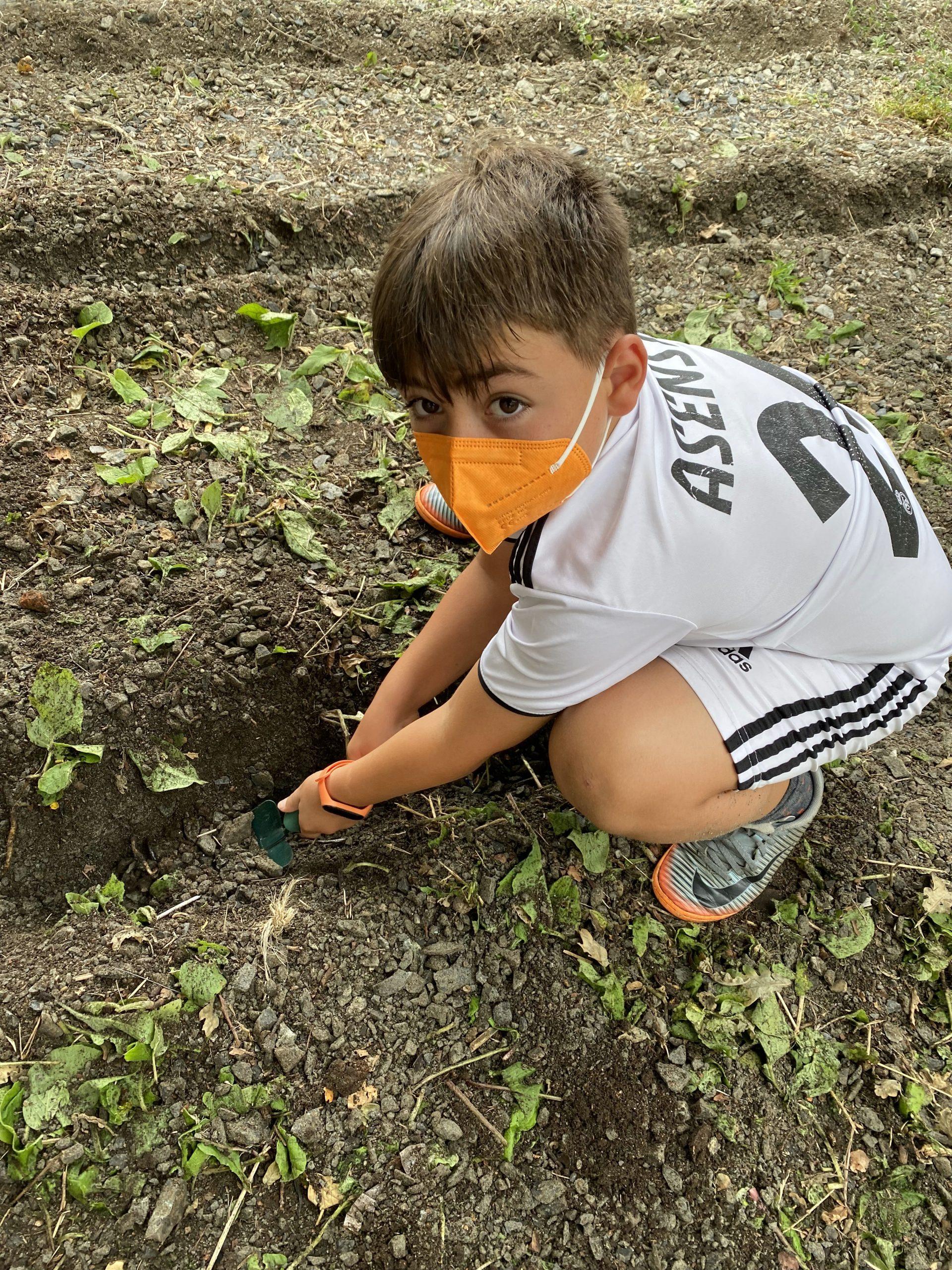 03 creando unha horta urbana