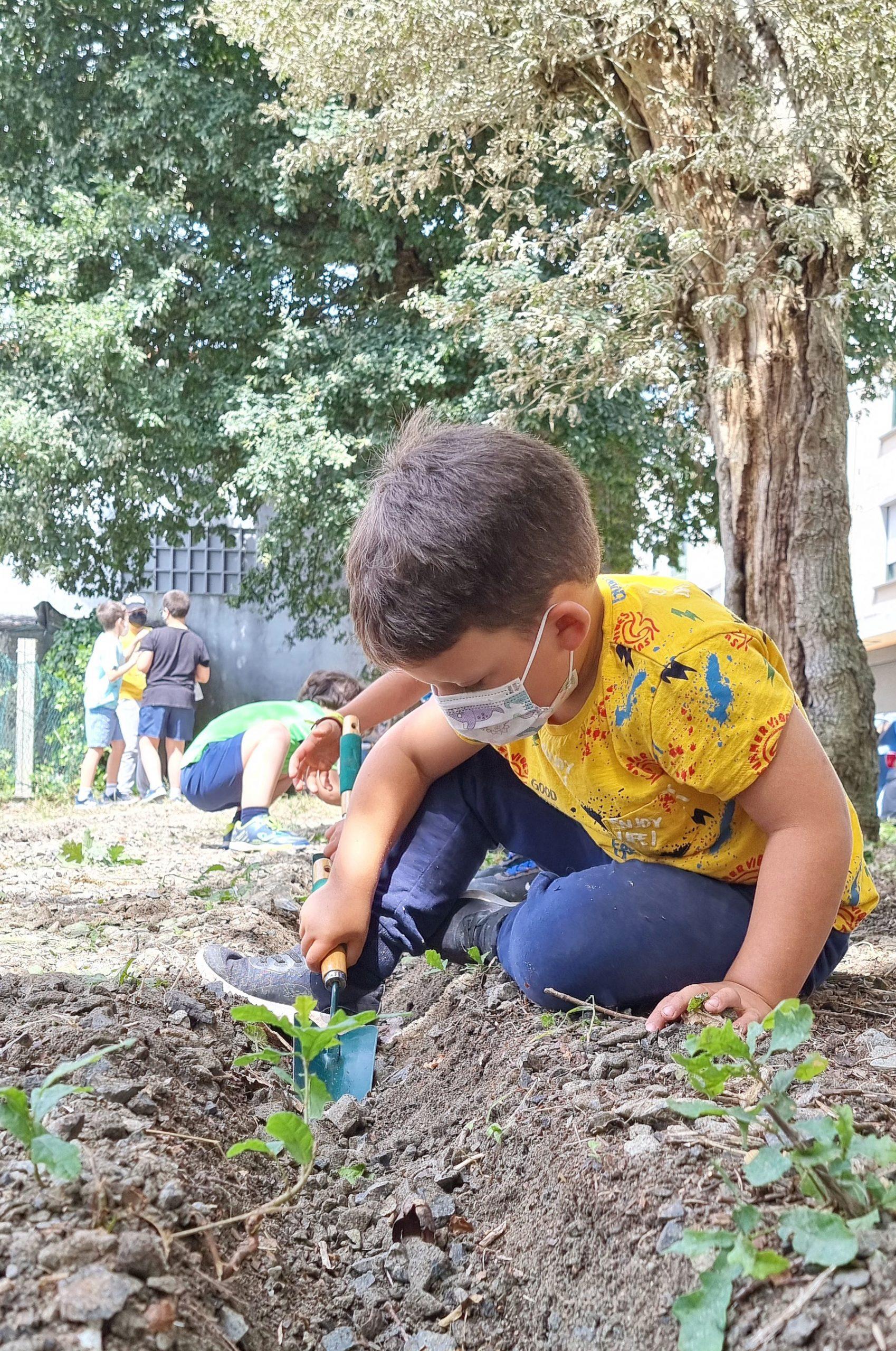 06 creando unha horta urbana