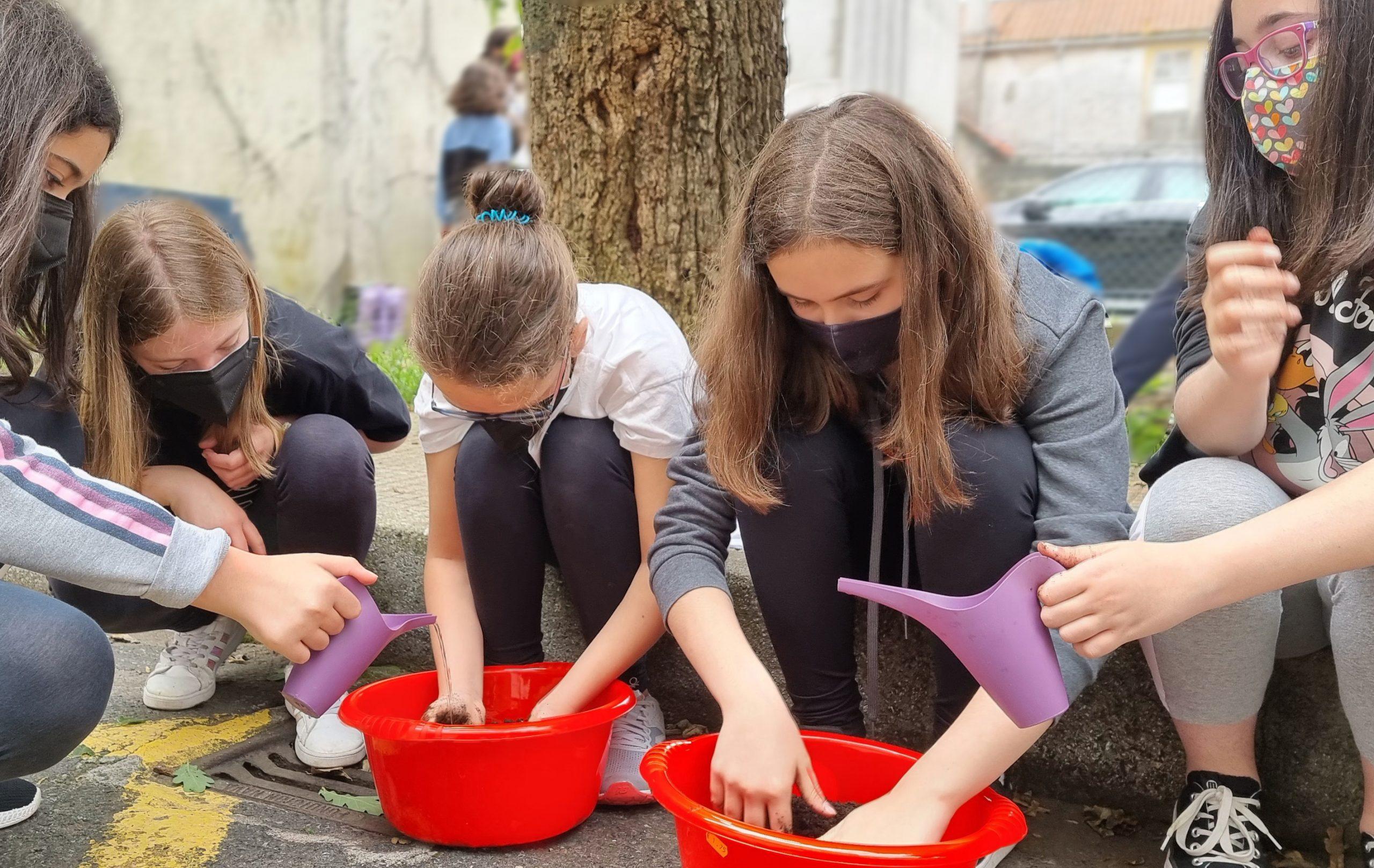 11 creando unha horta urbana